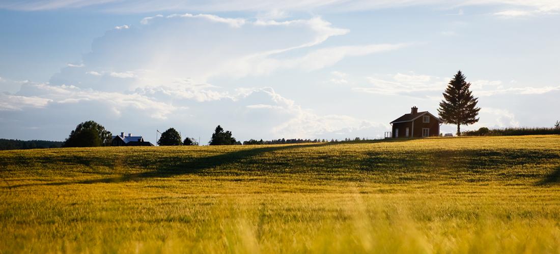 Miljöbild på en åker och ett hus i bakgrunden.